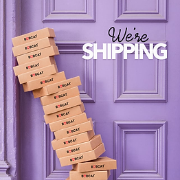 We're Shipping IG.png