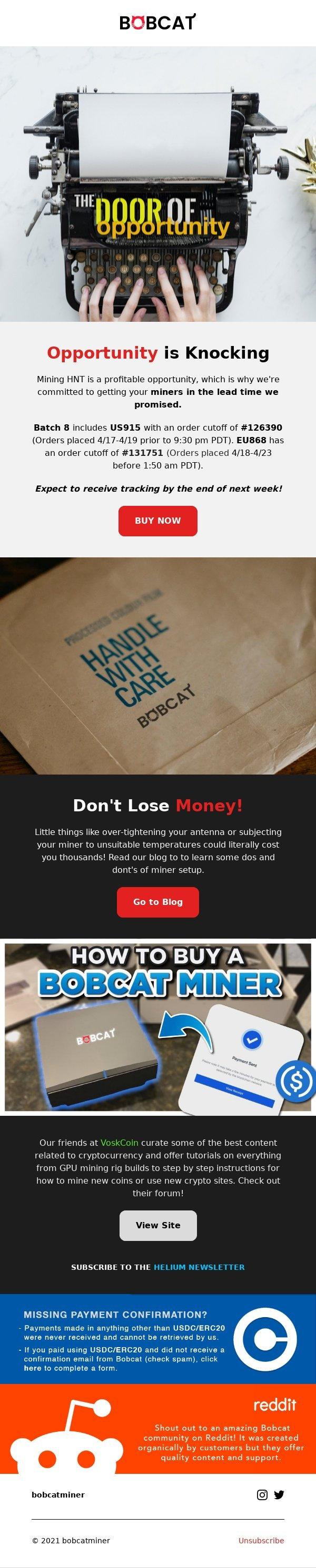 newsletter shopify.jpeg