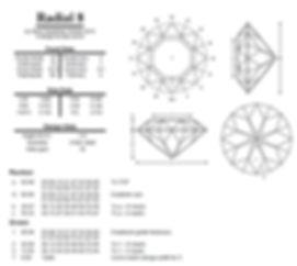 radial 8.jpg
