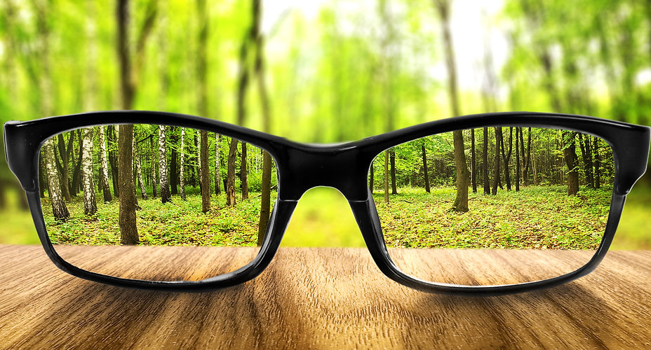 Clear forest in glasses on the background of blurred forest .jpg