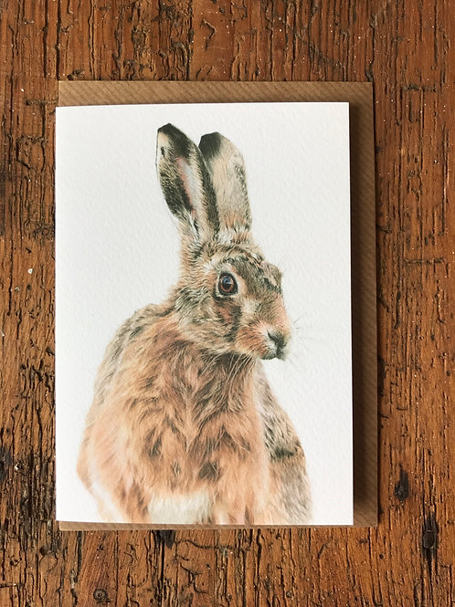 March Hare Greeting Card