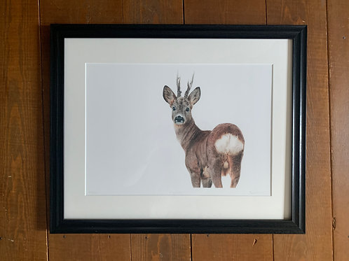 SALE Framed Hindsight Print