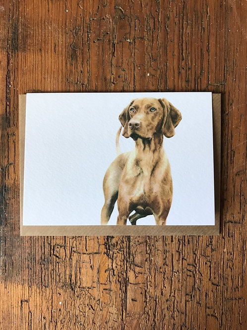 Vizsla Greeting Card