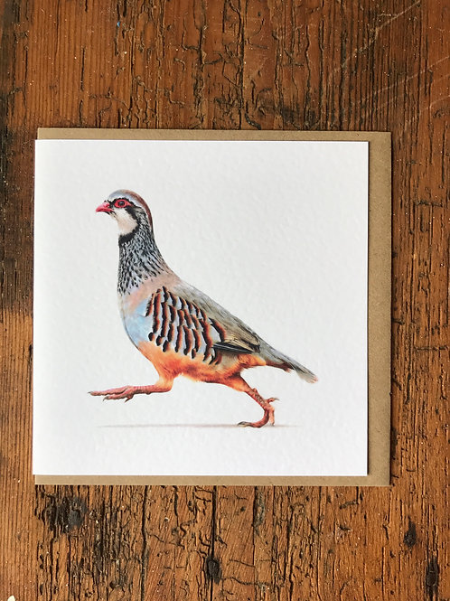 Partridge Greeting Card