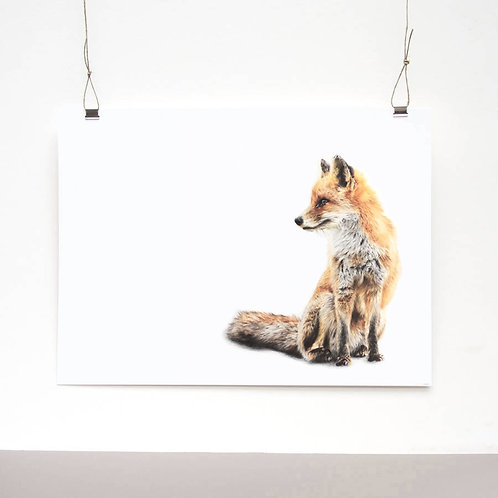 Young Vixen Limited Edition Print