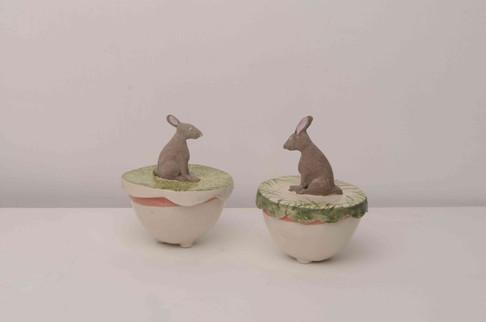 Mini Hare Boxes