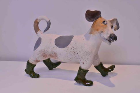 Dog in Wellies