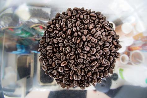 100% Organic Arabica Coffee