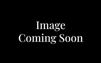 Screen Shot 2020-03-31 at 6.58.53 PM.png