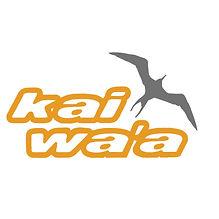 kaiwaa with iwa square.jpg