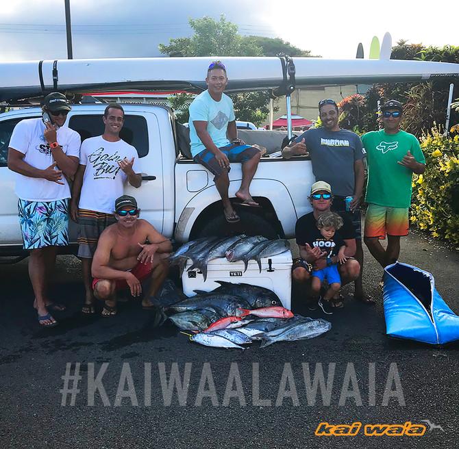 MAUI SPORTING GOODS JIGGING FISH TOURNAMENT