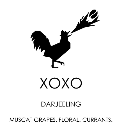 XOXO darjeeling tea by Unorthodox Roasters