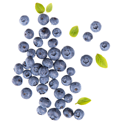 Blueberries-01.png