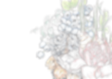 Huney Jun_Blueberry Chaga color-01.png