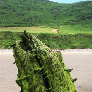 Michi in Wales.jpg