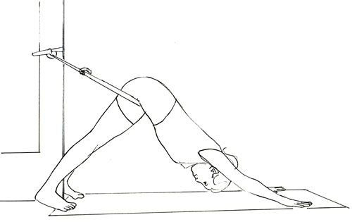 Ropes Dog Pose to stabilize the pelvis & lengthen the spine