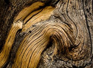 John Muir Trail, Sierra Nevada Mtns., Fine Art Photography, Landscapes, Sean Dupre', Lufkin, Tx.