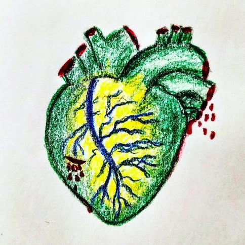 Brazilian Bleeding Heart, 2019, crayon on paper, A7_