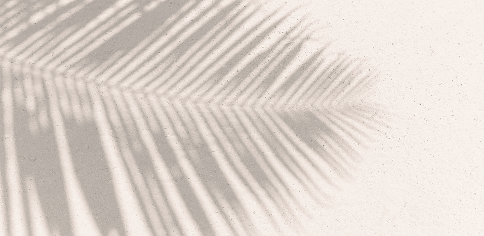 banners wix (1) (1).png
