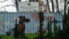 DSC Banner2.jpg