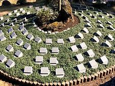 しだれ桜の樹木葬.jpg