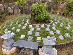 しだれ桜の樹木葬(個別墓)