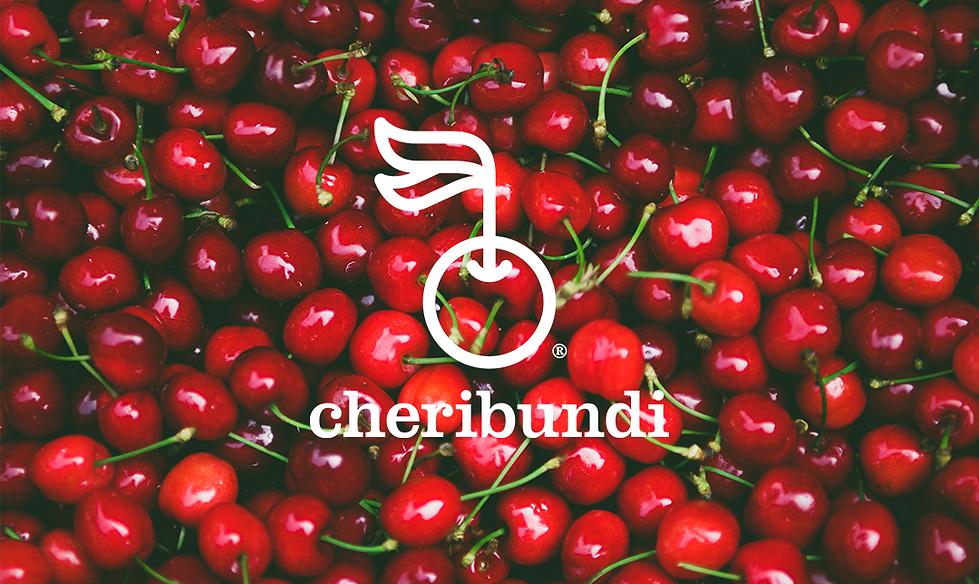 Cheribundi Title Slide.png