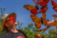 Craig and Monarchs.jpg