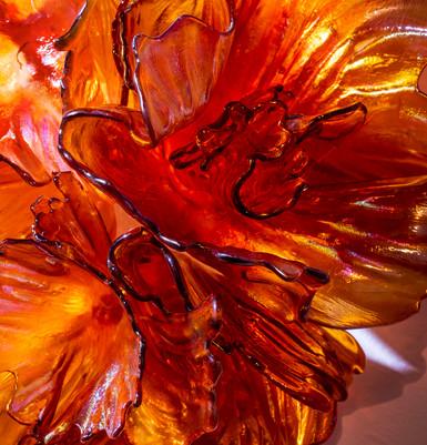 Amber Reef Detail 2