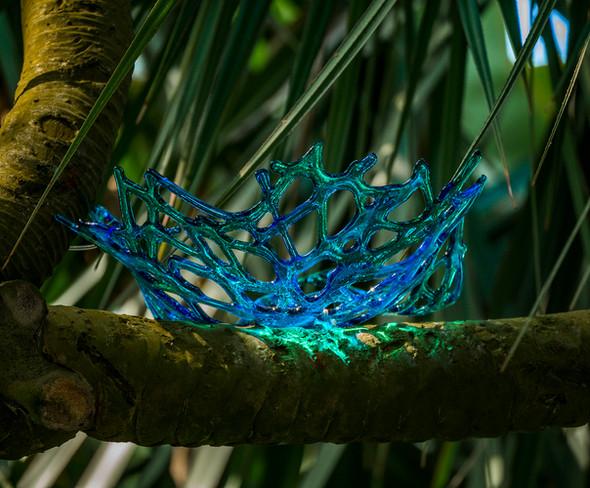 The Birds Nests