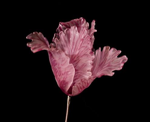 Flame Cerise Pink