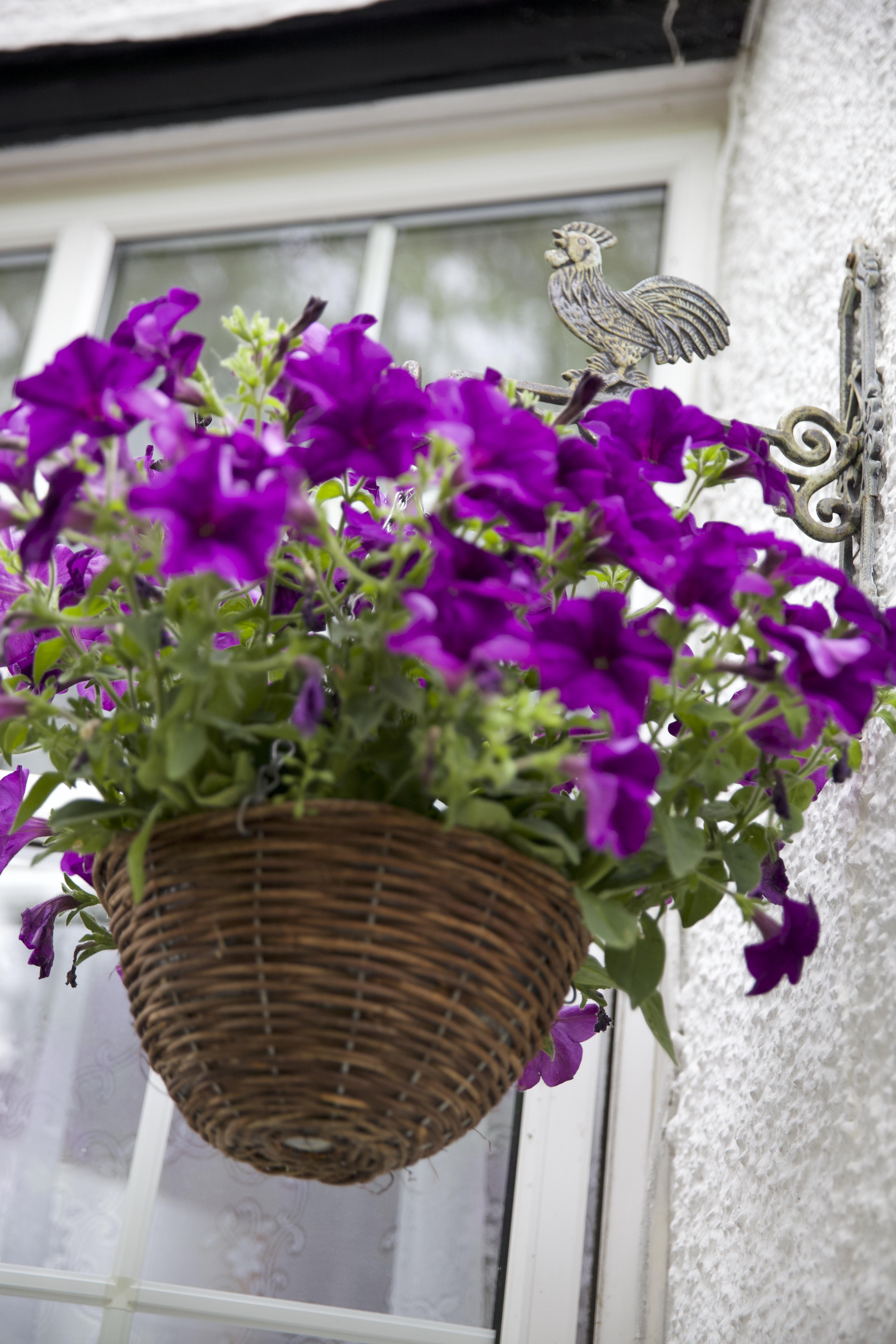 Mon Choisy Gardens