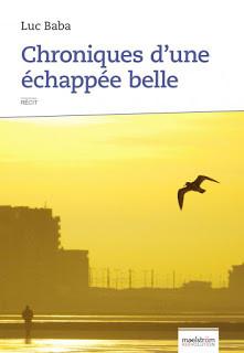 Chroniques d'une échappée belle - Luc Ba