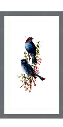 PRETTY BLUE BIRDS