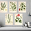 Thumbnail: 6  x Botanical Print Set C WITH FRAME