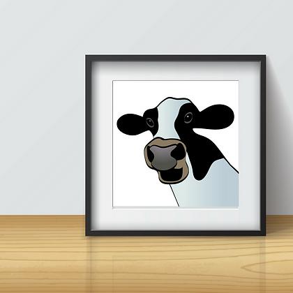 JOLLY COW
