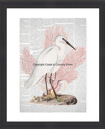 HERON WITH PINK CORAL