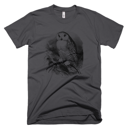 Mens quality tee shirt Owl design