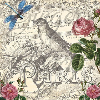 PARIS SONGBIRD