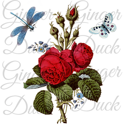 ROSES AND DRAGONFLY