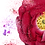 Thumbnail: Buy Both Red Rose Frames - save £30