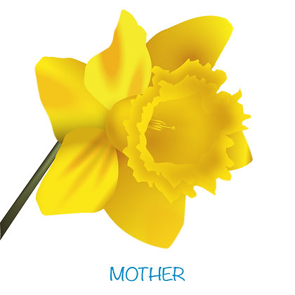 Daffodil Mother Card