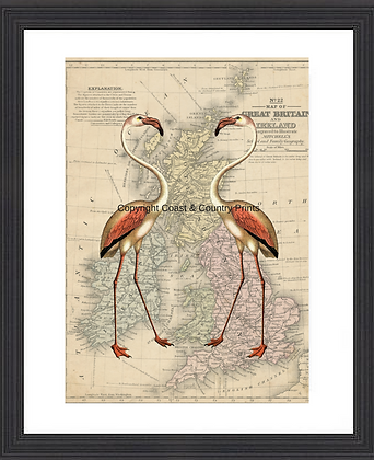 FLAMINGO PRINT ON REPRO BRITISH ISLES MAP