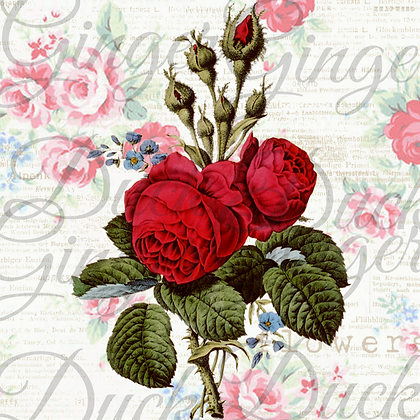 RED ROSES ON PINK BACKGROUND