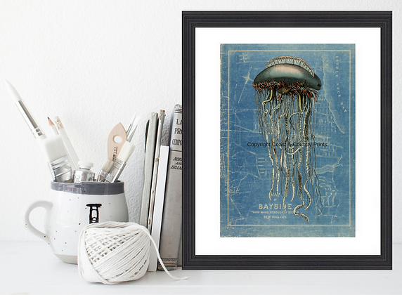 LION'S MAN JELLYFISH ON REPRO MAP BACKGROUND