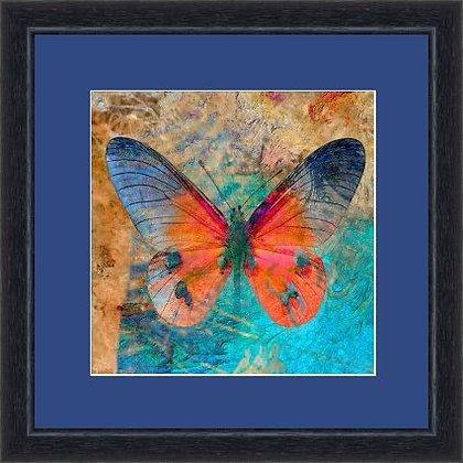 FRAMED PRINT BUTTERFLY BLUE