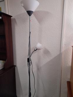 FLOOR LAMP WITH READING LIGHT £10
