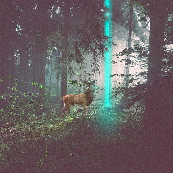a surreal image of a deer in forest