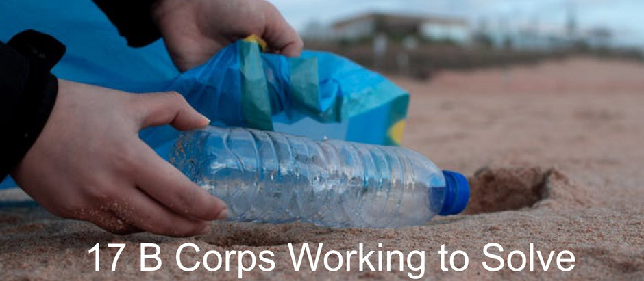 17 B Corps Working to Solve our Plastics Problem