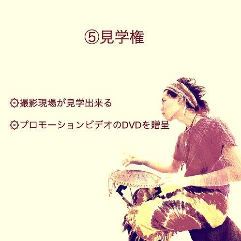 ⑤撮影見学権